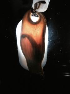 Baby shark pod